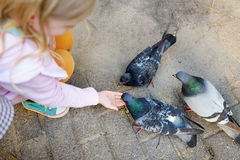 Adorable little girl feeding some pigeons outdoors Stock Photography