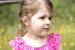 Adorable little girl in the forest meadow Royalty Free Stock Photo