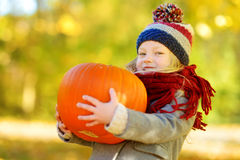Adorable little girl having fun on a pumpkin patch on beautiful autumn day Stock Images