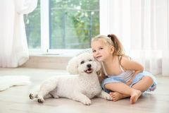 Adorable little girl with her dog. At home stock photos