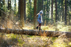 Adorable little girl hiking in forest Stock Image