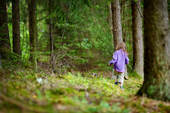 Adorable little girl hiking in the forest Royalty Free Stock Photography