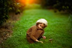 Adorable little girl hiking in the forest on summer day royalty free stock photos