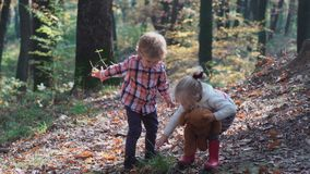 Adorable little girl hiking in the forest on summer day. Happy child girl in forest. Little kid playing in the autumn on stock footage