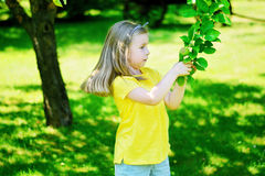 Adorable little girl holding apple tree branch in the garden on royalty free stock photos