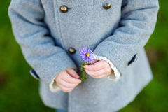 Adorable little girl holding a flower Stock Photography