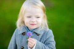 Adorable little girl holding a flower Stock Photos