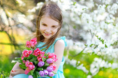 Adorable little girl holding tulips for her mother in blooming cherry garden Royalty Free Stock Image