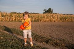 Adorable little girl holding two small pumpkins on the field royalty free stock photography