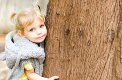 Adorable little girl hugging the tree in the park Stock Photography