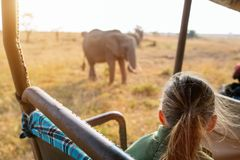 Little girl on safari royalty free stock images