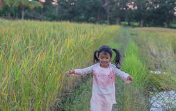 Adorable little girl laughing in a meadow - happy girl at sunset Stock Photos