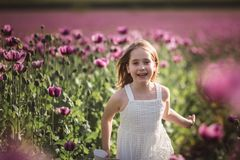 Adorable little girl with long hair in white dress lonely walking in the Lilac Poppy Flowers field stock photos