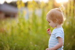 Adorable little girl in a meadow with strawberry Royalty Free Stock Images