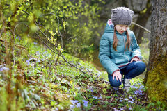 Adorable little girl picking the first flowers of spring in the woods Stock Images