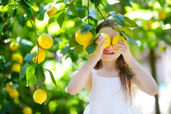 Adorable little girl picking fresh ripe lemons Stock Photos