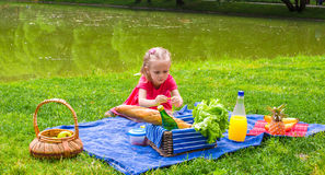 Adorable little girl on picnic outdoor near the Royalty Free Stock Image