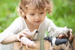 Adorable little girl play with animal toys. Cute toddler girl playing with farm animal figures outdoors. Summer leisure. childhood on countryside. Child learning Royalty Free Stock Photos
