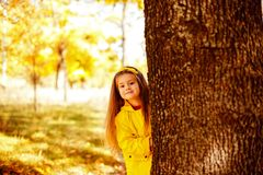 Adorable little girl playing with autumn leaves stock image