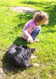 Adorable little girl playing with dog in summer park. stock photo