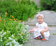 Adorable little girl playing with flowers outdoors Royalty Free Stock Photography