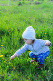 Adorable little girl playing on meadow in the countryside Stock Photos