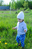Adorable little girl playing on meadow in the countryside Royalty Free Stock Photos