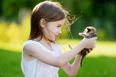 Adorable little girl playing with small kitten Royalty Free Stock Images