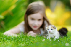 Adorable little girl playing with small kitten Stock Image