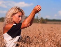 Adorable little girl playing in the wheat field Stock Image