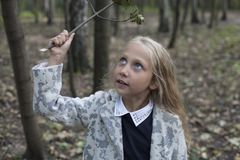 Adorable little girl playing in the wood Stock Photos