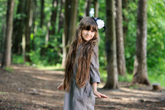 Adorable little girl posing in summer forest Stock Photography