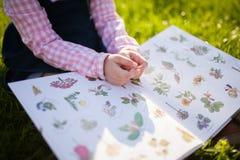 Adorable little girl reading botany stock photo