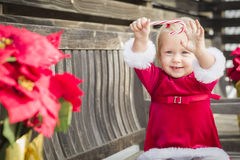 Adorable Little Girl Sitting On Bench with Her Candy Cane Stock Images