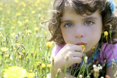 Adorable little girl smell flower in meadow Stock Photography