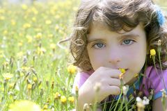 Adorable little girl smell flower in meadow Stock Image