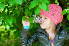 Adorable little girl is smelling flower Stock Image