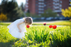 Adorable little girl smelling a tulip Stock Photos