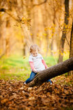 Adorable little girl on the tree with autumn leaves Stock Photo