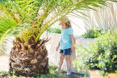 Adorable little girl at the tropical resort, standing by the palm three at the sunny summer day royalty free stock photos