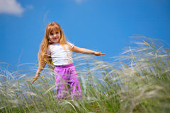 Little girl walks on the field Stock Image