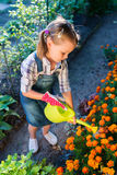 Adorable little girl watering flowers stock image