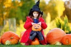 Adorable little girl wearing halloween costume having fun on a pumpkin patch Stock Image