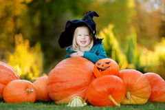 Adorable little girl wearing halloween costume having fun on a pumpkin patch Stock Photos