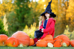 Adorable little girl wearing halloween costume having fun on a pumpkin patch Royalty Free Stock Photos