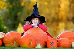 Adorable little girl wearing halloween costume having fun on a pumpkin patch Stock Photos