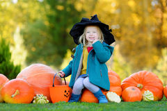 Adorable little girl wearing halloween costume having fun on a pumpkin patch Stock Image