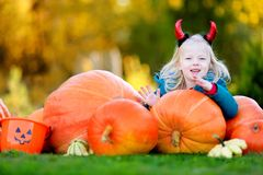 Adorable little girl wearing halloween costume having fun on a pumpkin patch Stock Photography