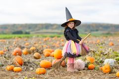Little girl wearing halloween witch costume on pumpkin patch. Adorable little girl wearing halloween witch costume having fun on pumpkin patch farm. Traditional Stock Photos