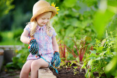 Adorable little girl wearing straw hat and childrens garden gloves playing with her toy garden tools in a greenhouse Royalty Free Stock Image